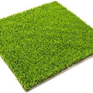 Playkids verde